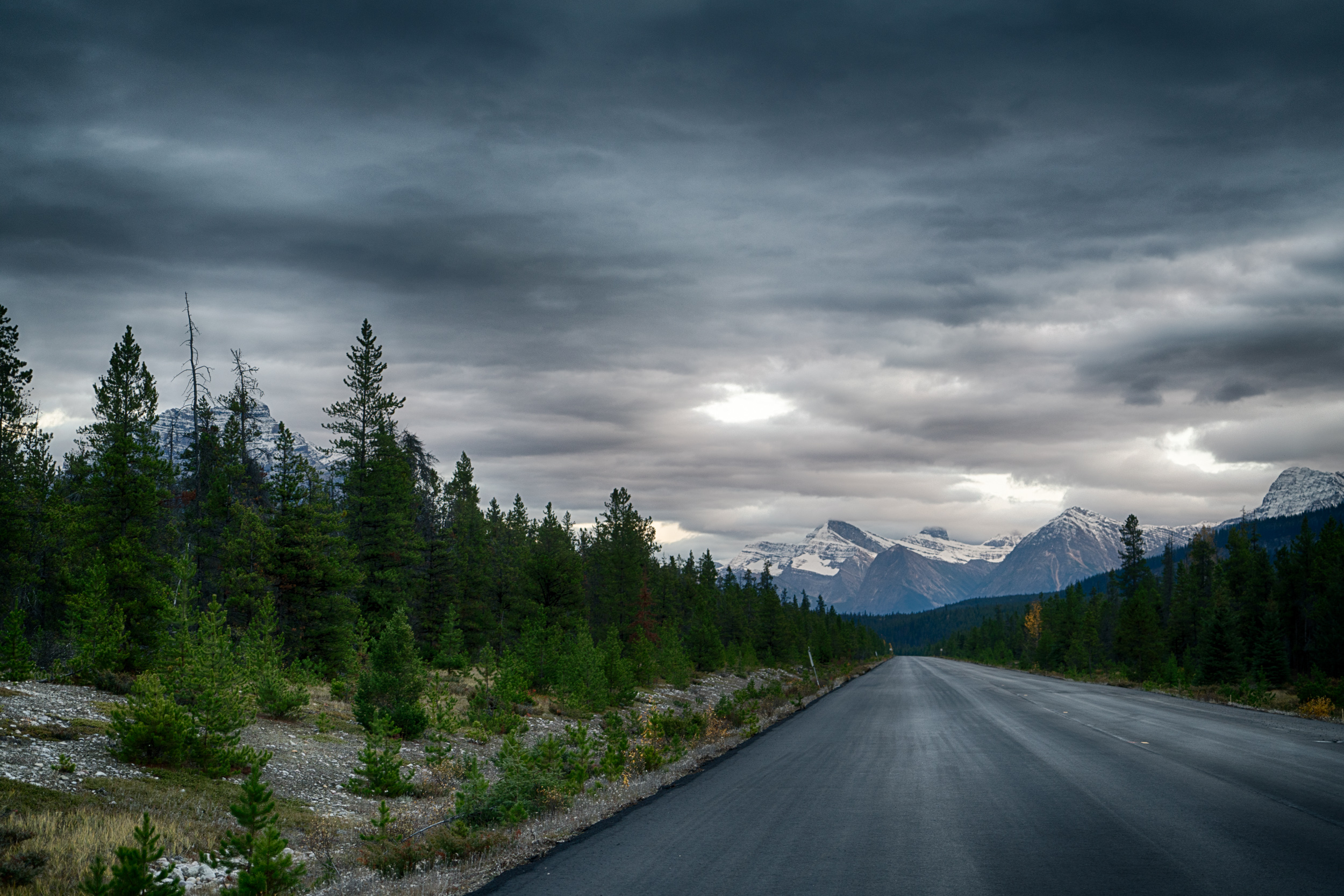 The road to Jasper (northbound)